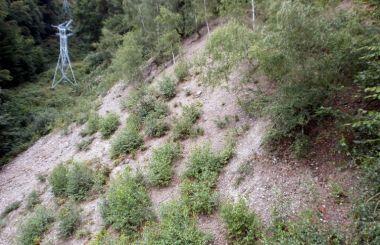 Bergbaurevier Knötel