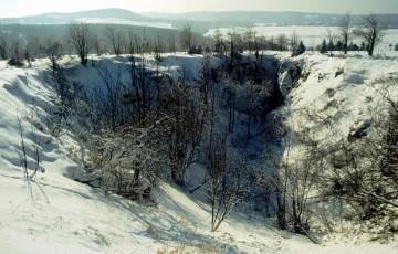 Schnepp shaft collapse