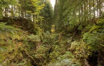 Eibenstock Mining Landscape