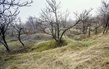 Bergbaulandschaft Steinknochen