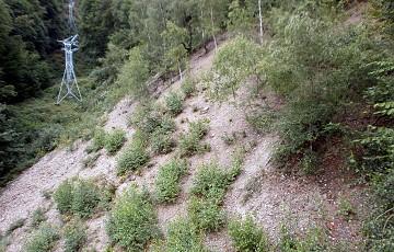 Bergbaulandschaft Knötel